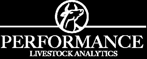 Performance Live Stockan Alytics